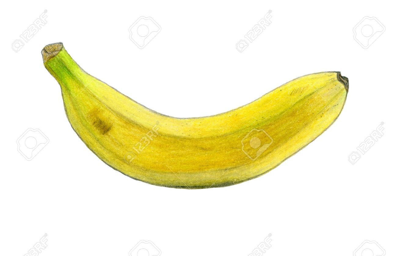 Banana Color Sketch Drawing By Color Pencils Isolated On White Stock Photo Picture And Royalty Free Image Image 61758292