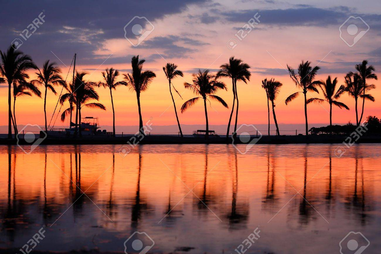 Paradise Beach Sunset Or Sunrise With Tropical Palm Trees Summer Travel Holidays Vacation Getaway Colorful