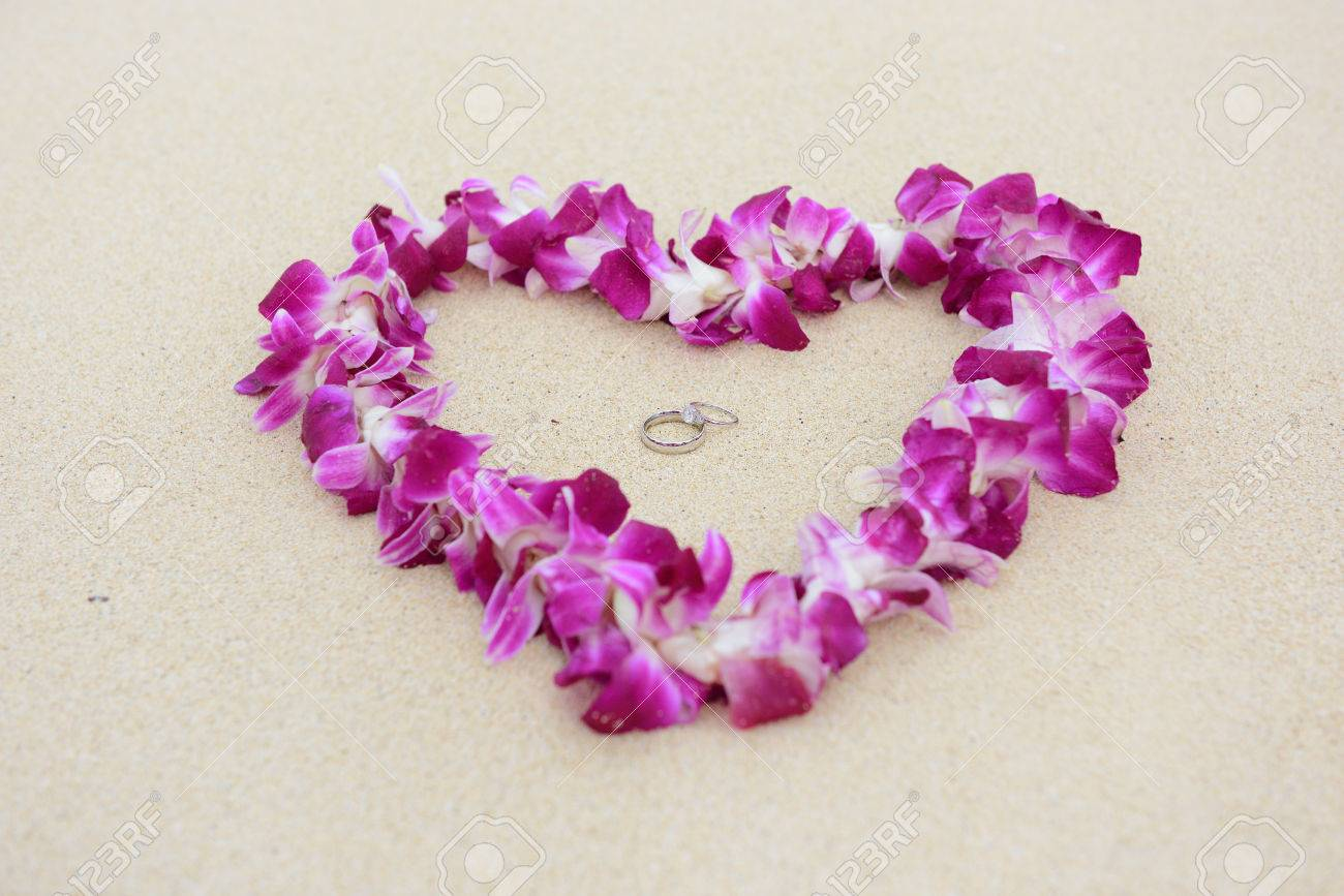 Wedding Rings Beach Love Concept. Closeup Of Two Bands In Flower ...