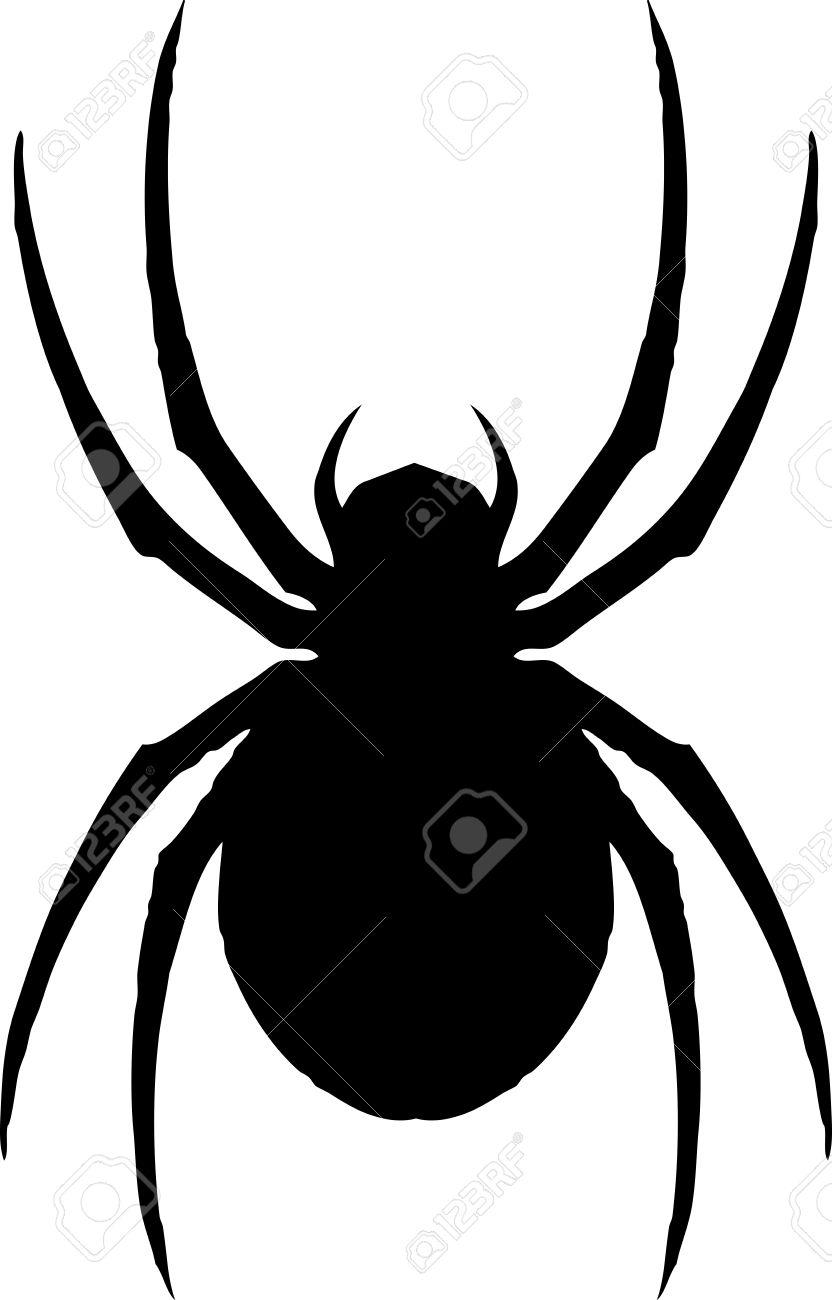 古典的な象徴的なクモ黒の未亡人のイラストのイラスト素材ベクタ