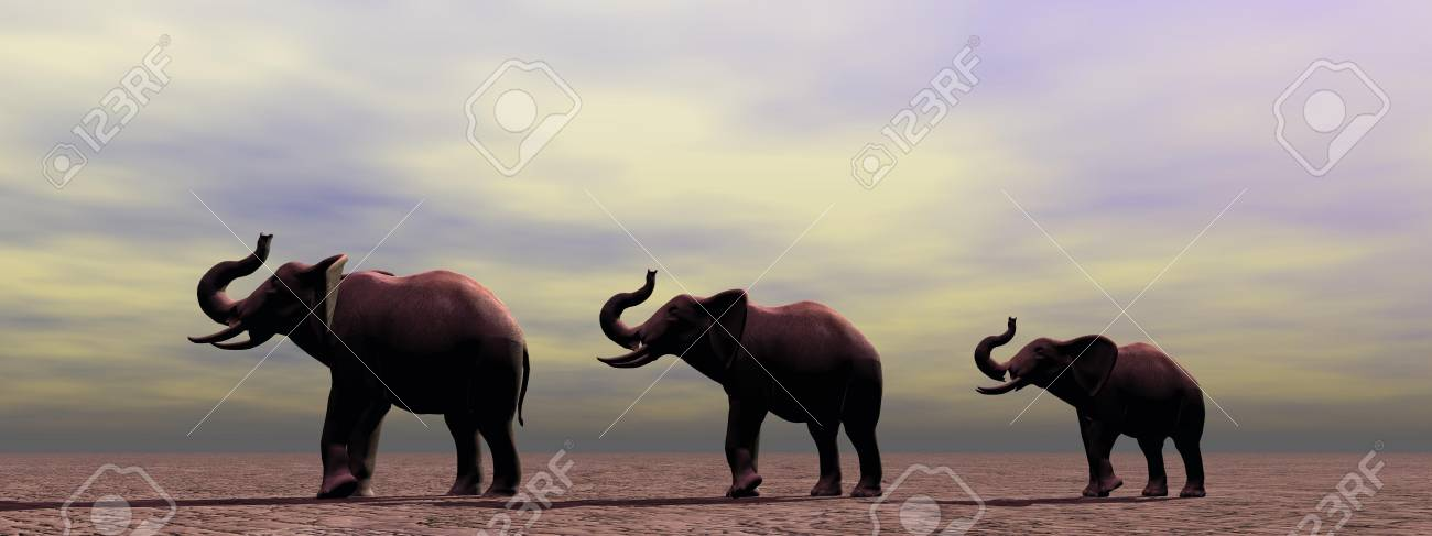 elephants and sky Stock Photo - 14837033