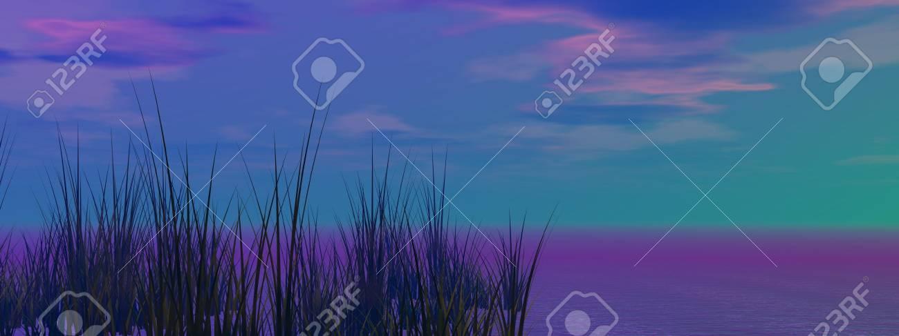 grass black and sky - 16145357