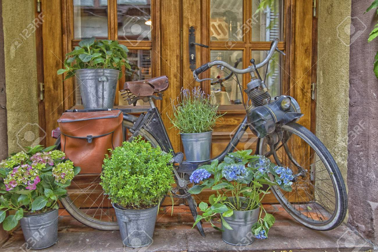Solex exhibition in front of a window and flowers - 60741651