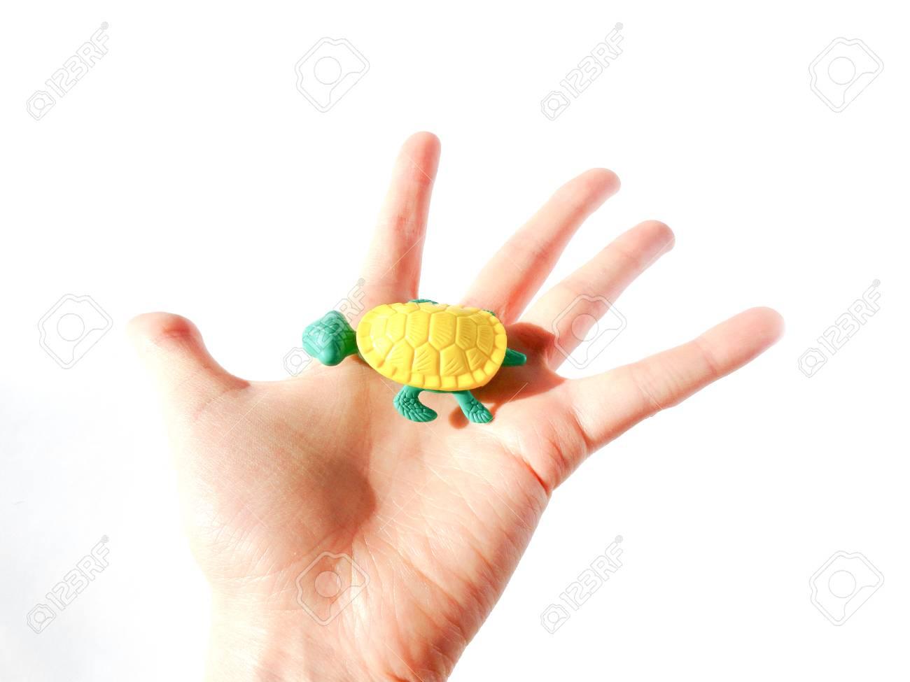 赤ちゃんの小さなおもちゃ 面白いおもちゃです 子どもの発達 白地 の写真素材 画像素材 Image