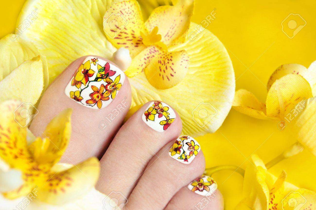 Foto de archivo , Pedicura con orquídeas amarillas en las piernas de las mujeres s en un fondo amarillo