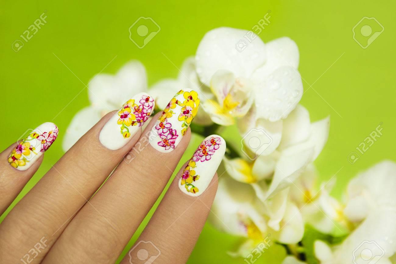 Arte Del Clavo Del Diseño Con La Foto De Las Orquídeas En La Mano De ...
