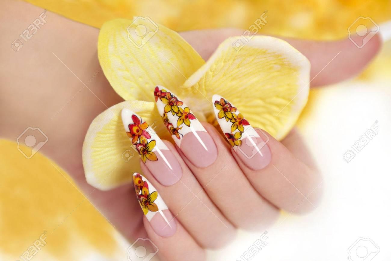 nagel mit einem muster aus gelben orchideen auf einem langen geformte ngel standard bild - Nagel Muster