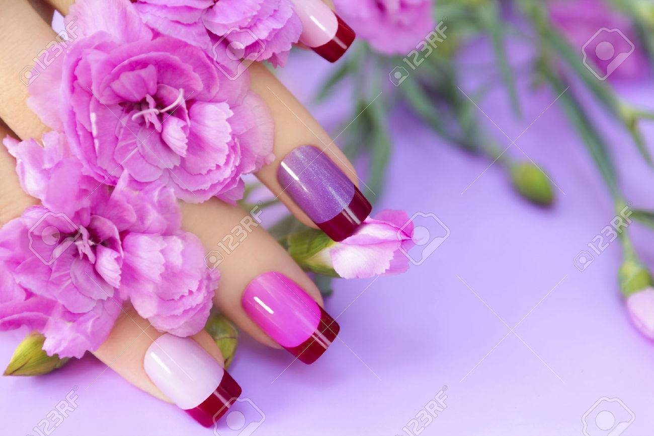 Colorful French manicure in lilac pink shades of nail Polish on the woman. - 59288163