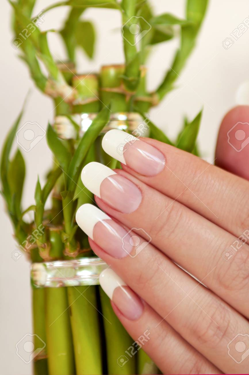 Oval Long French Manicure On Female Hand With Bamboo Closeup. Stock ...