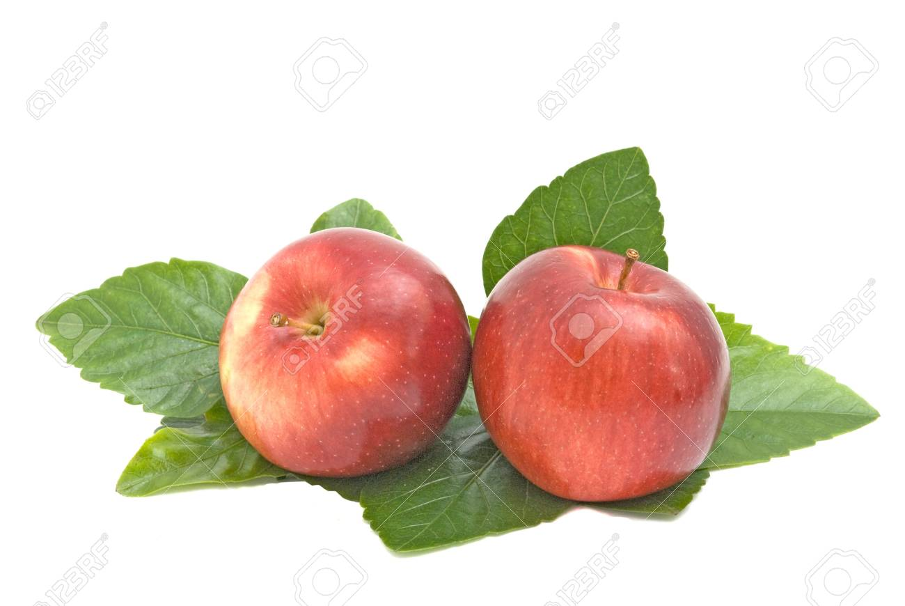 Two red apples on leaves Stock Photo - 4178518