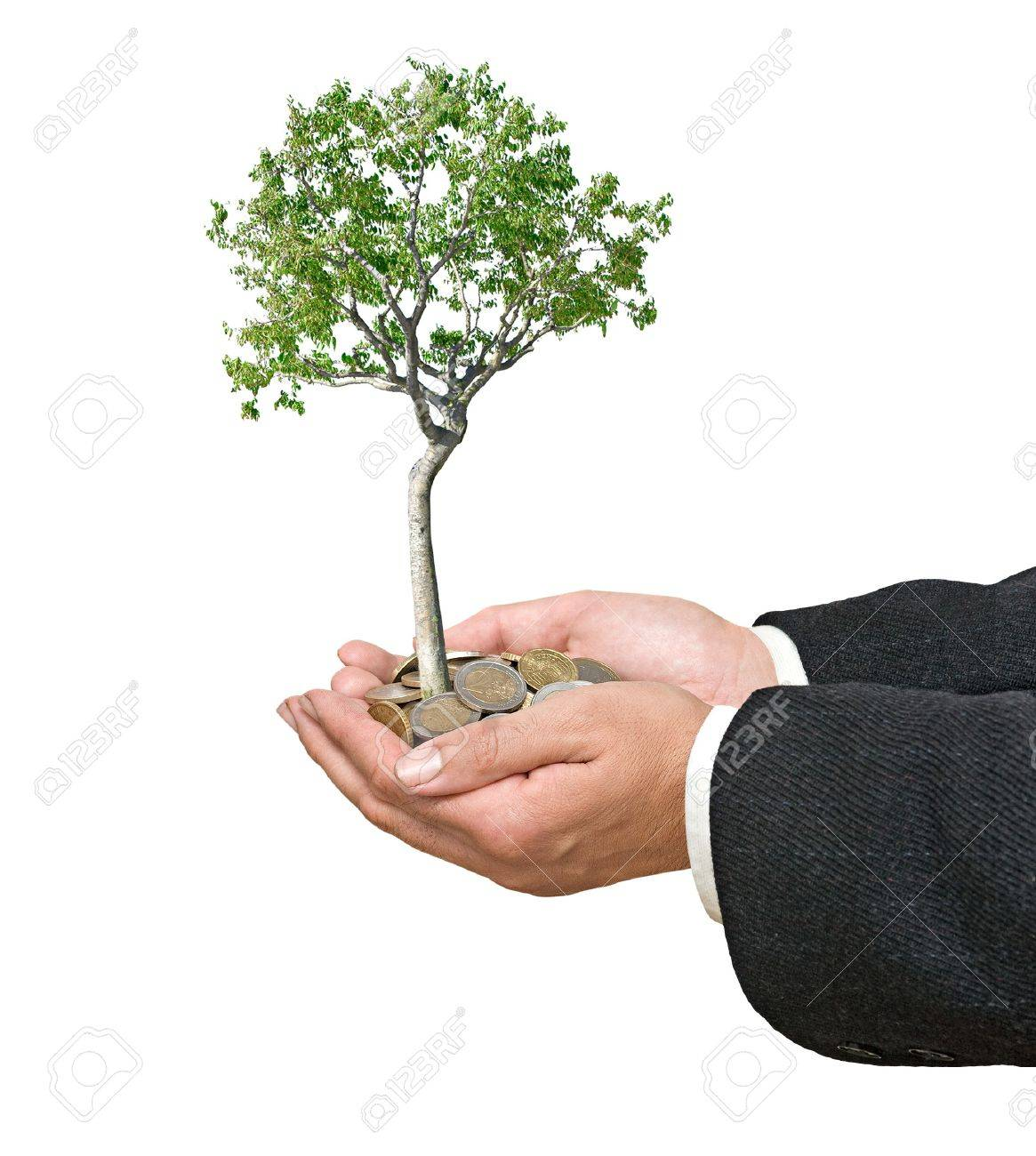 Palms with a tree growng from pile of coins Stock Photo - 8167159