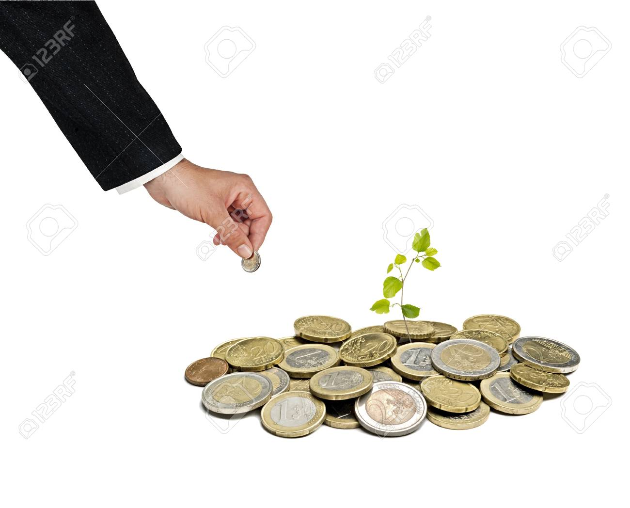 sapling growing from pile of coins Stock Photo - 14066199
