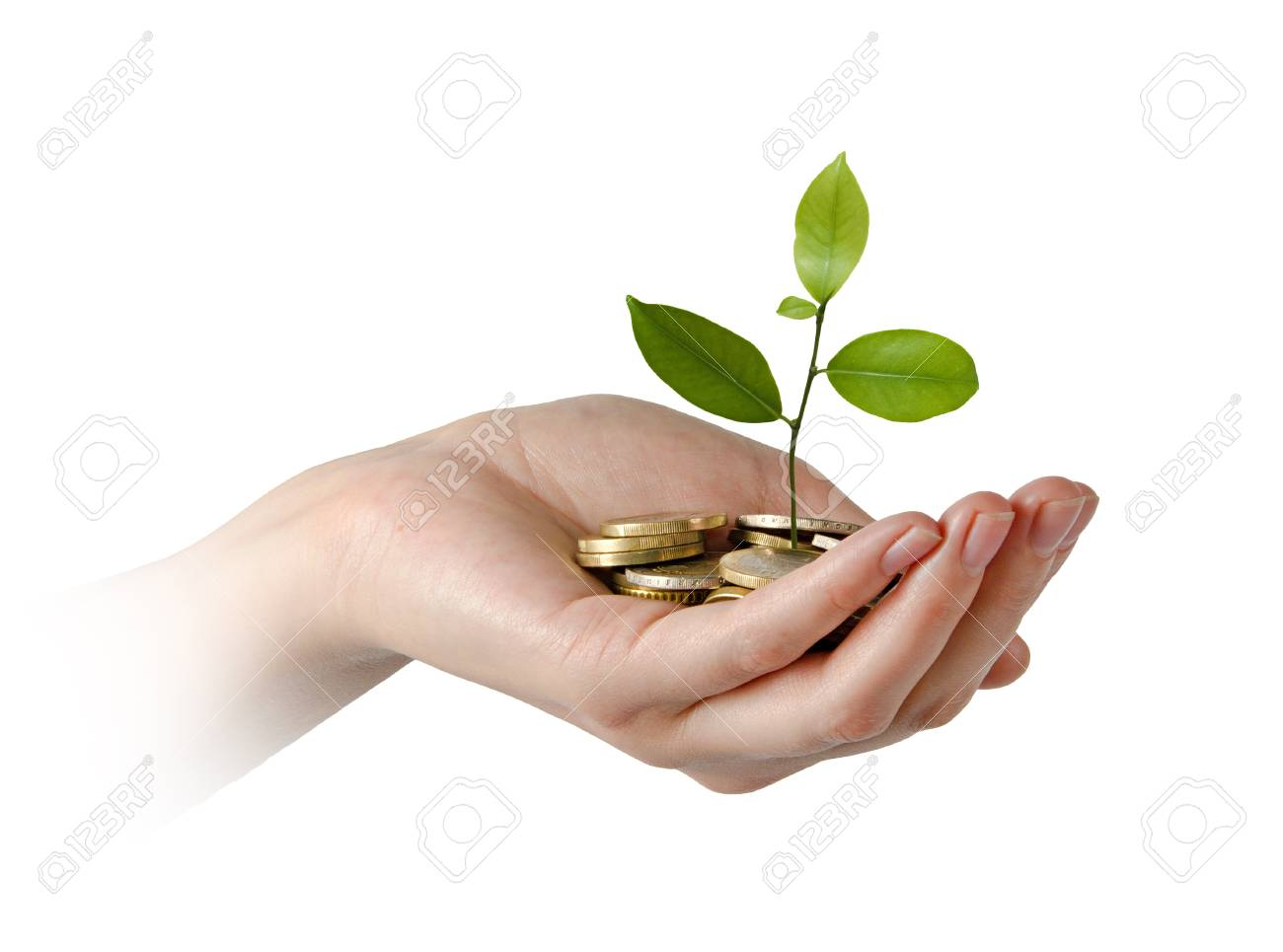 Investing to green business Stock Photo - 16759622