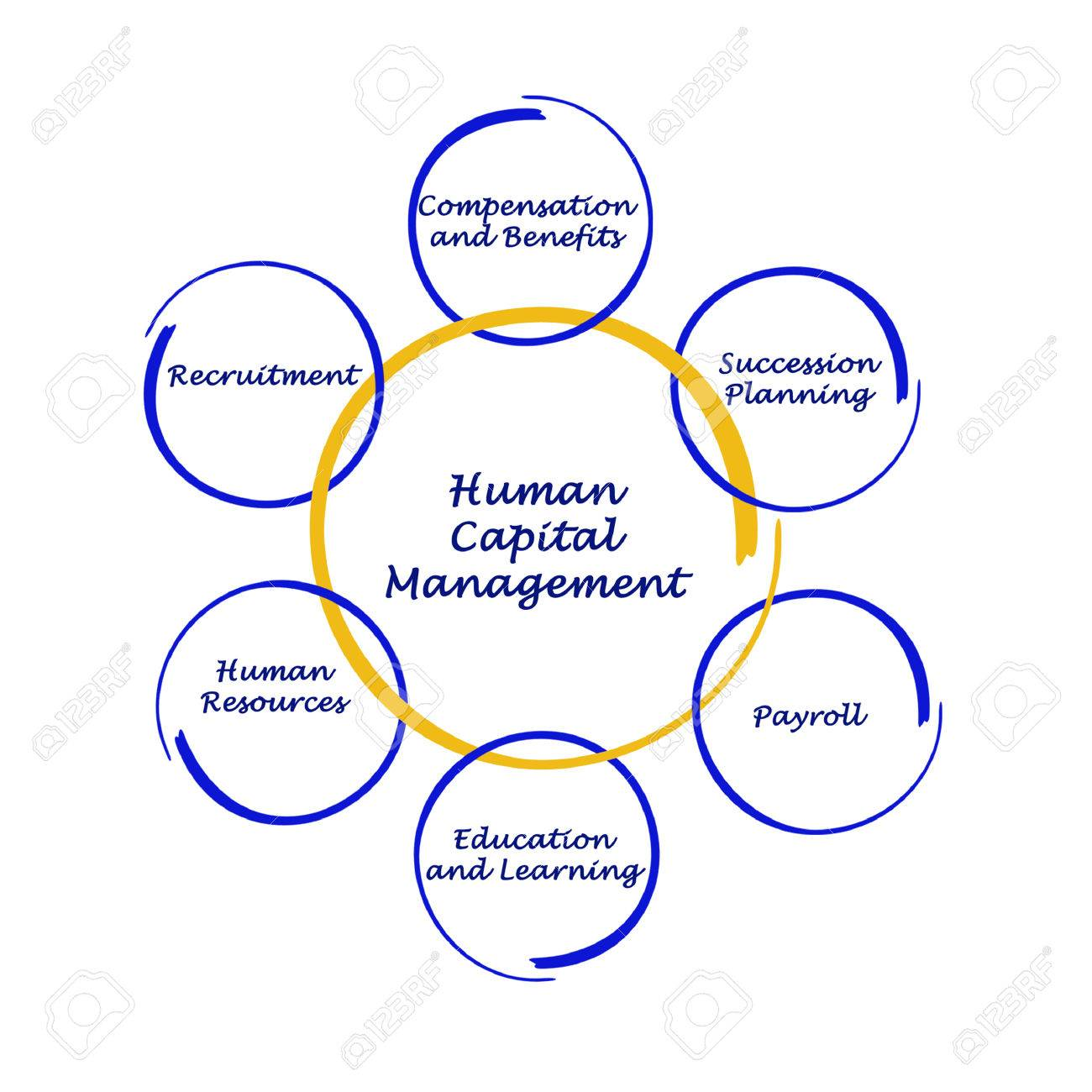Human Capital Management Stock Photo, Picture And Royalty Free ...