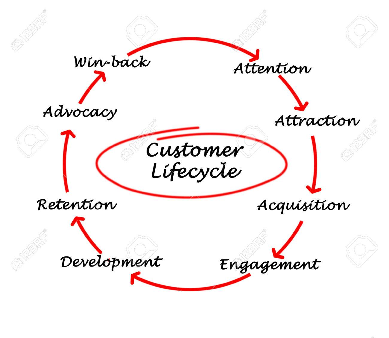 Customer Life Cycle Stock Photo - 27696929