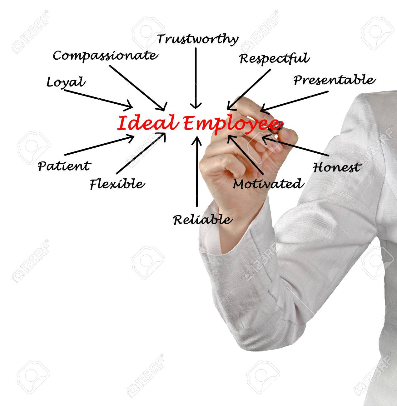 ideal employee stock photo picture and royalty image image ideal employee stock photo 30770398