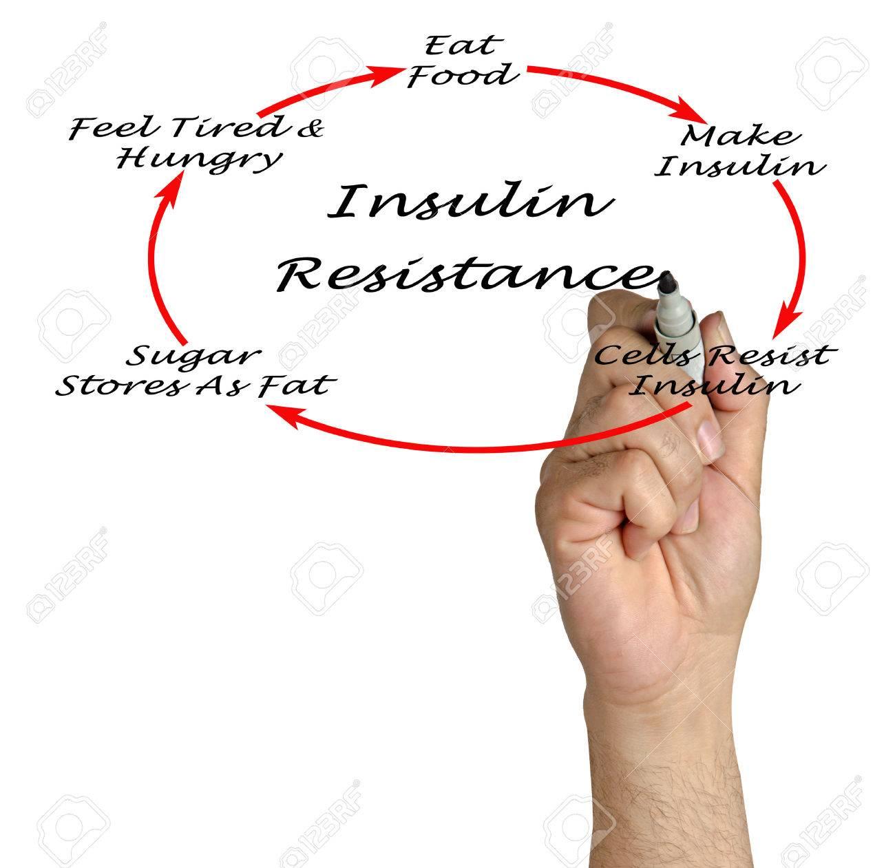Insulin Resistance Stock Photo - 45130169