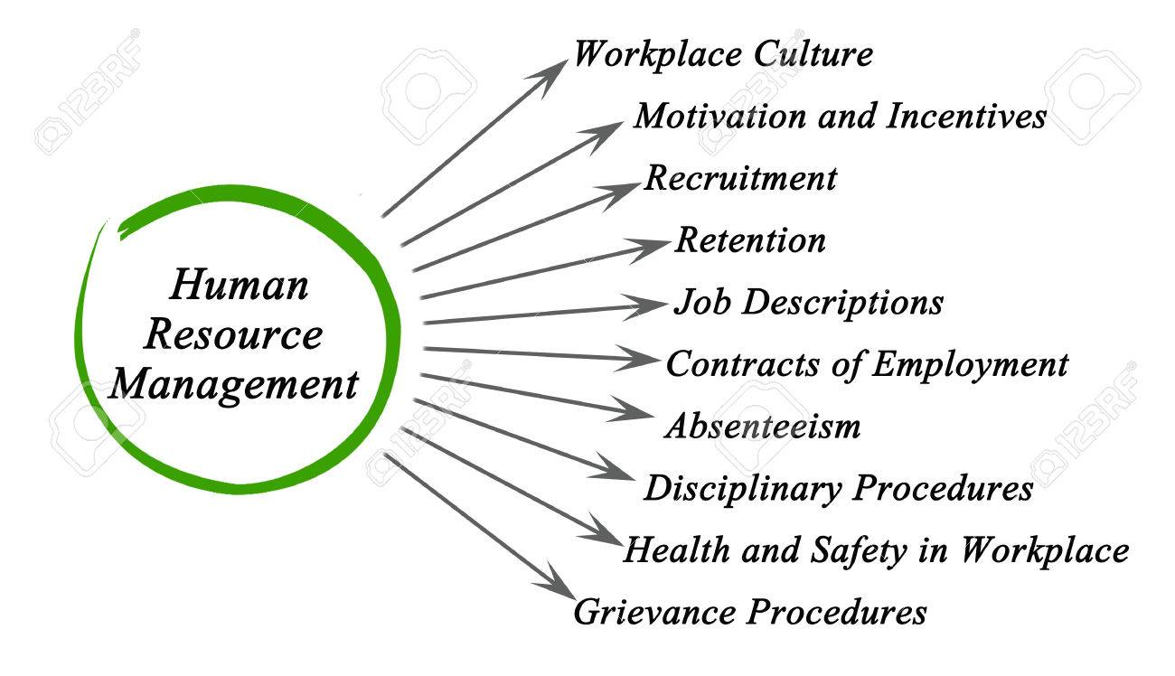 Diagram of human resource management all kind of wiring diagrams diagram of human resource management stock photo picture and rh 123rf com class diagram of human resource management system use case diagram of human ccuart Image collections