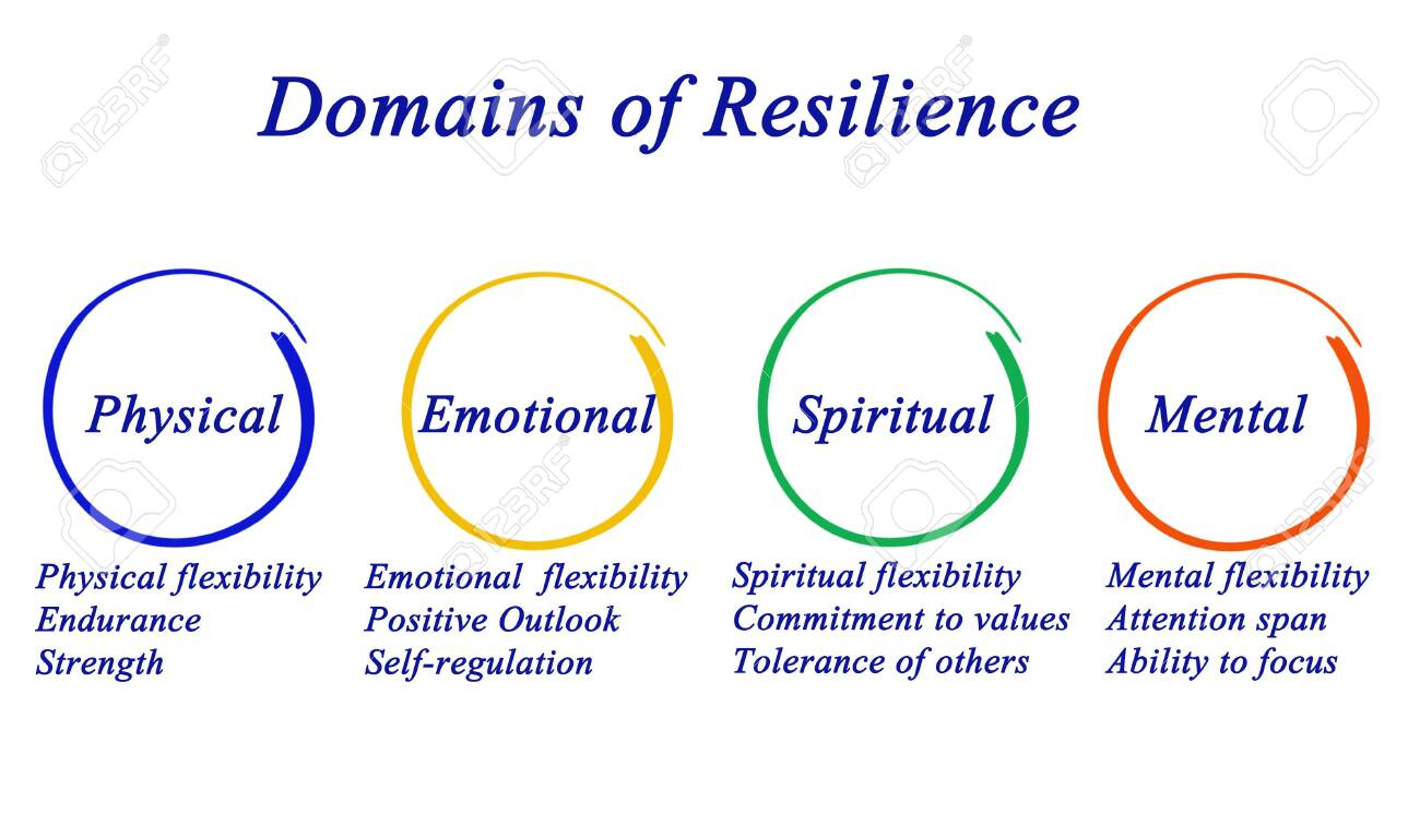 Domains of Resilience - 121811634