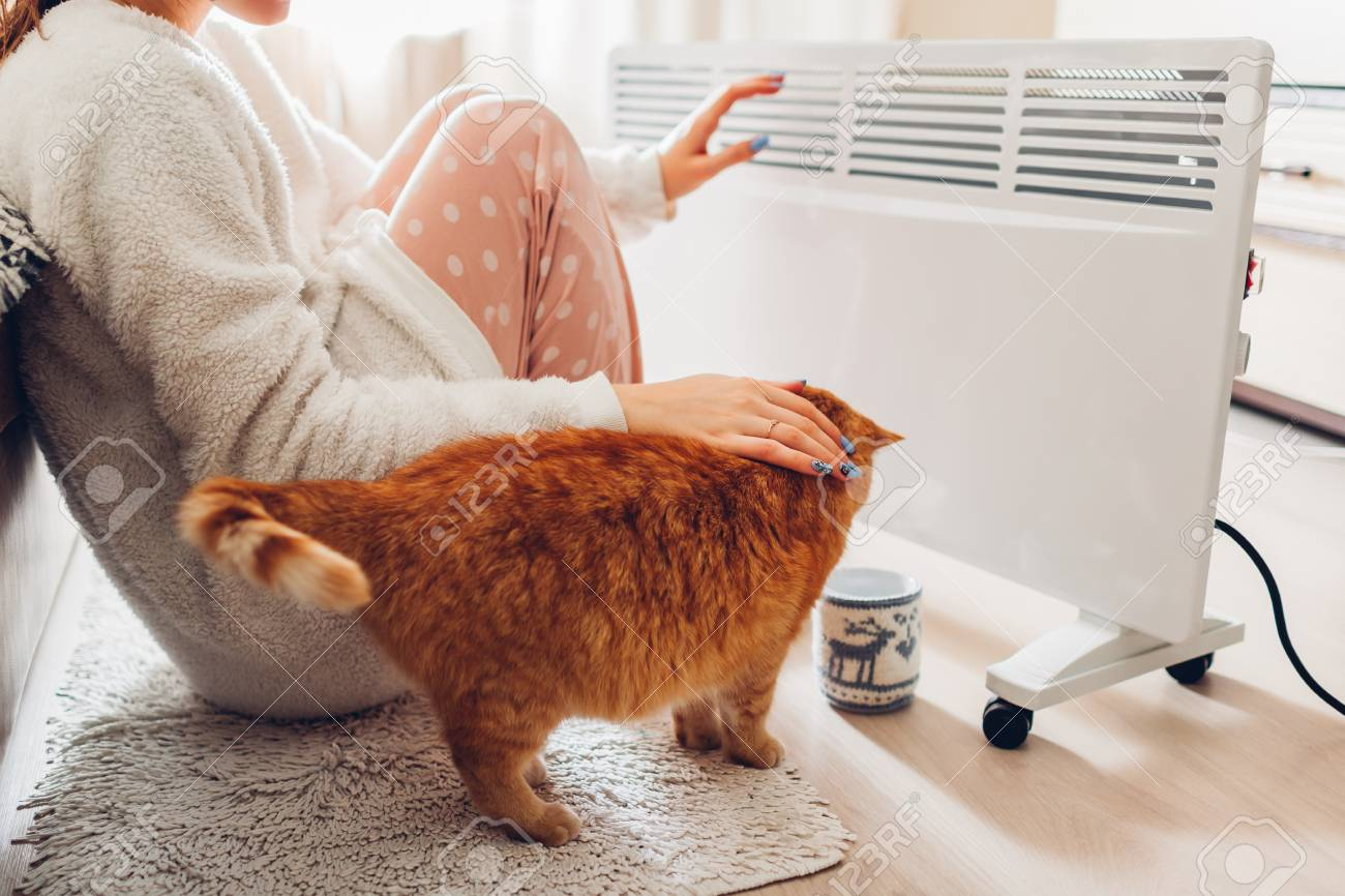 Using heater at home in winter. Woman warming her hands sitting by device with cat and wearing warm clothes. Heating season. - 117973896
