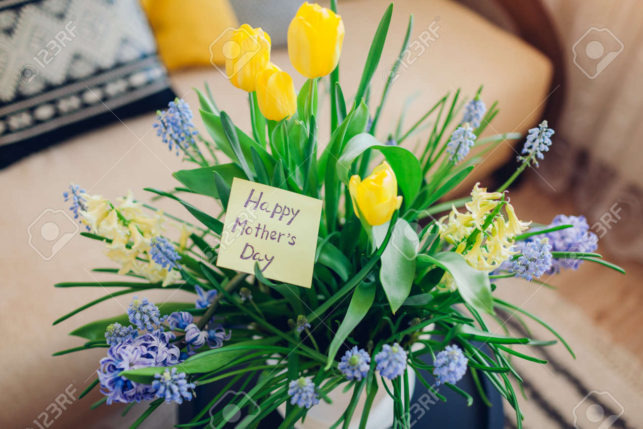 Mother's day present. Pot with blooming spring yellow and blue flowers and greeting card waits for mom at home. Gift for holiday with 2021 colors - 168610420