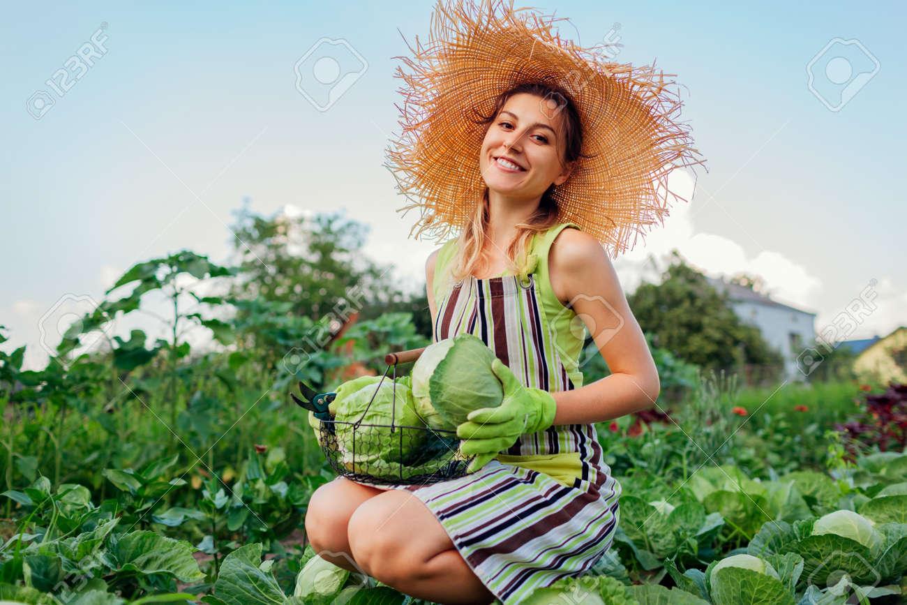 Young happy woman gardener picking cabbage in summer garden putting vegetable crop in basket. Organic vegetables harvest. Healthy food - 171699151