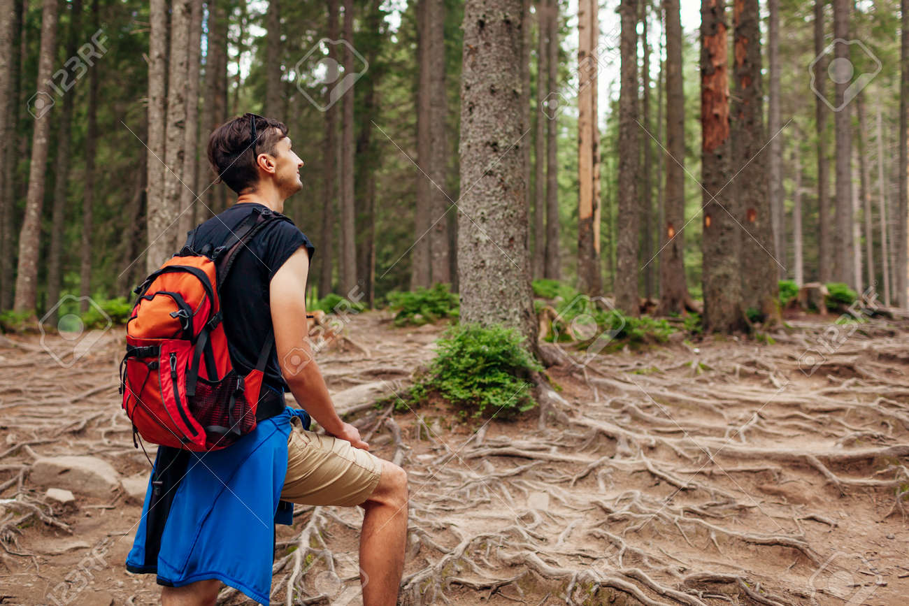 Man hiker walking through mountain forest path surrounded with roots in Carpathians. Traveler with backpack resting. Trip to summer Ukraine - 173728319