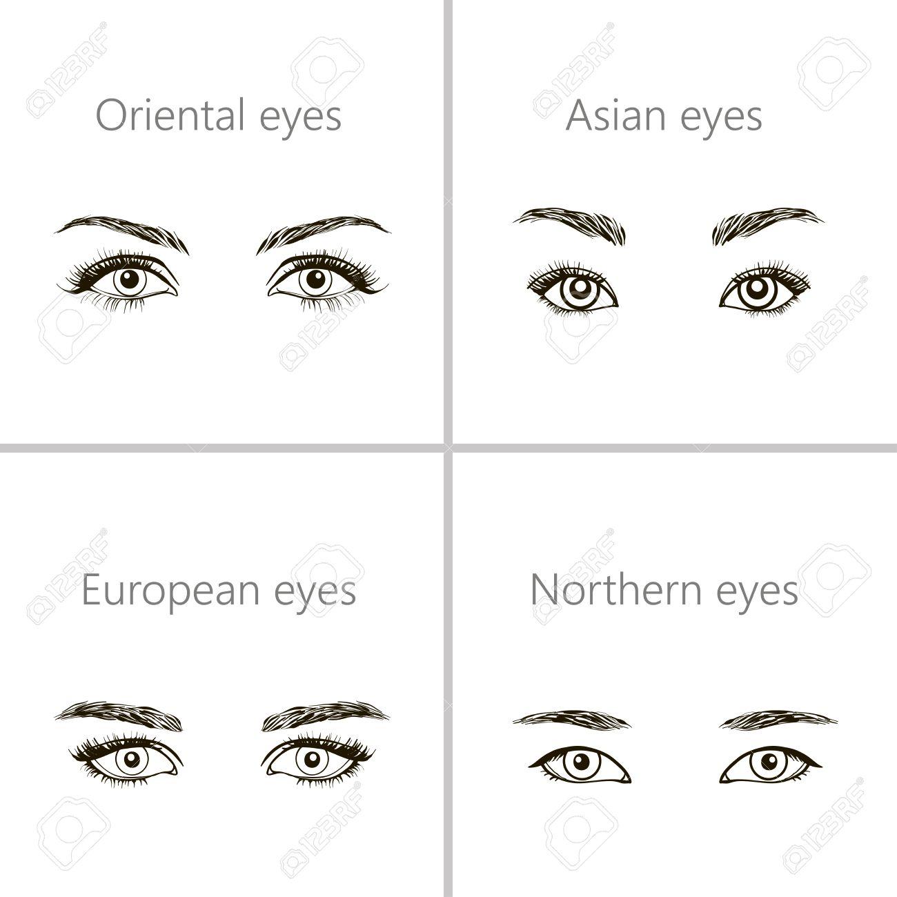 set of eyes shapes various types of woman eyes royalty free