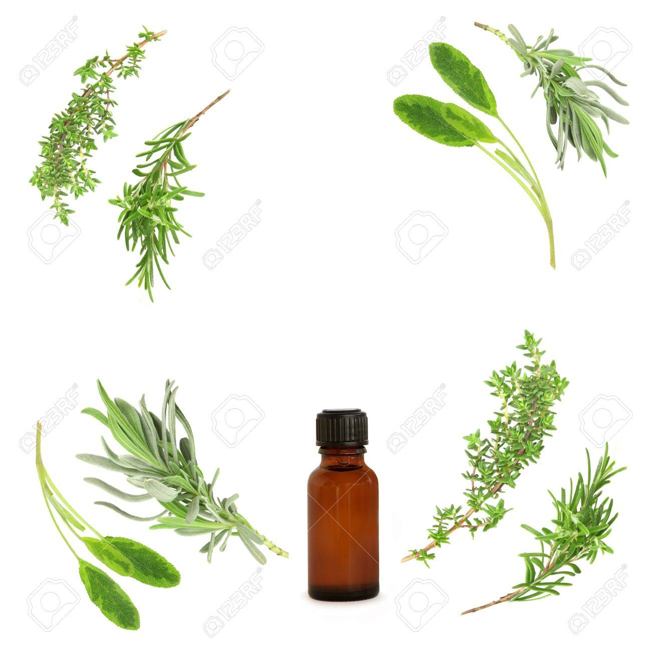 Lavender, sage, rosemary and thyme herbs leaf sprigs in abstract circular design, with aromatherapy  essential oil bottle. Over white background. Stock Photo - 3974563