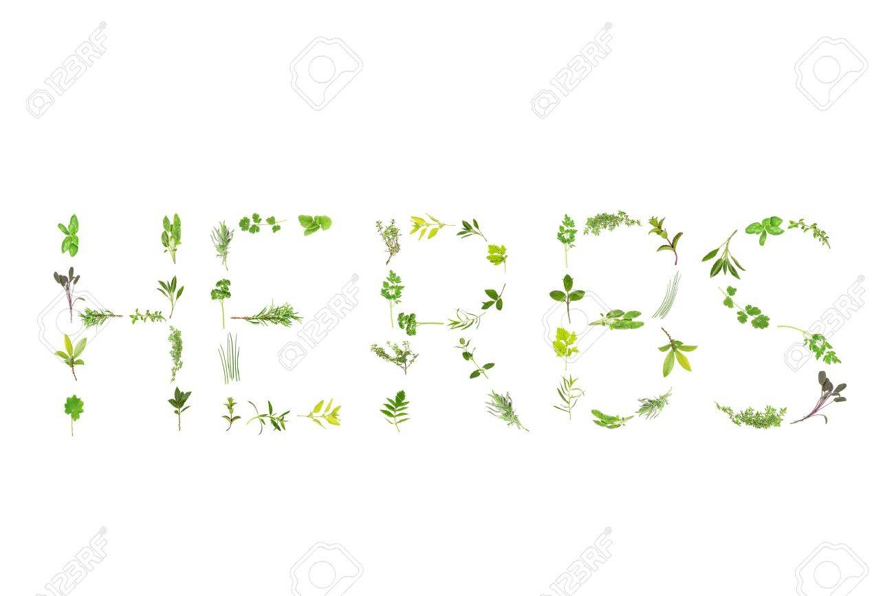 Herb leaf sprigs  forming the word herbs, over white background.  Lavender,  bergamot, marjoram, rosemary, thyme, sage, basil, mint, hyssop, oregano, parsley,   feverfew, comfrey, coriander,chives;tarragon, catmint, lemon balm, spearmint, bay, ladies mant Stock Photo - 4165587