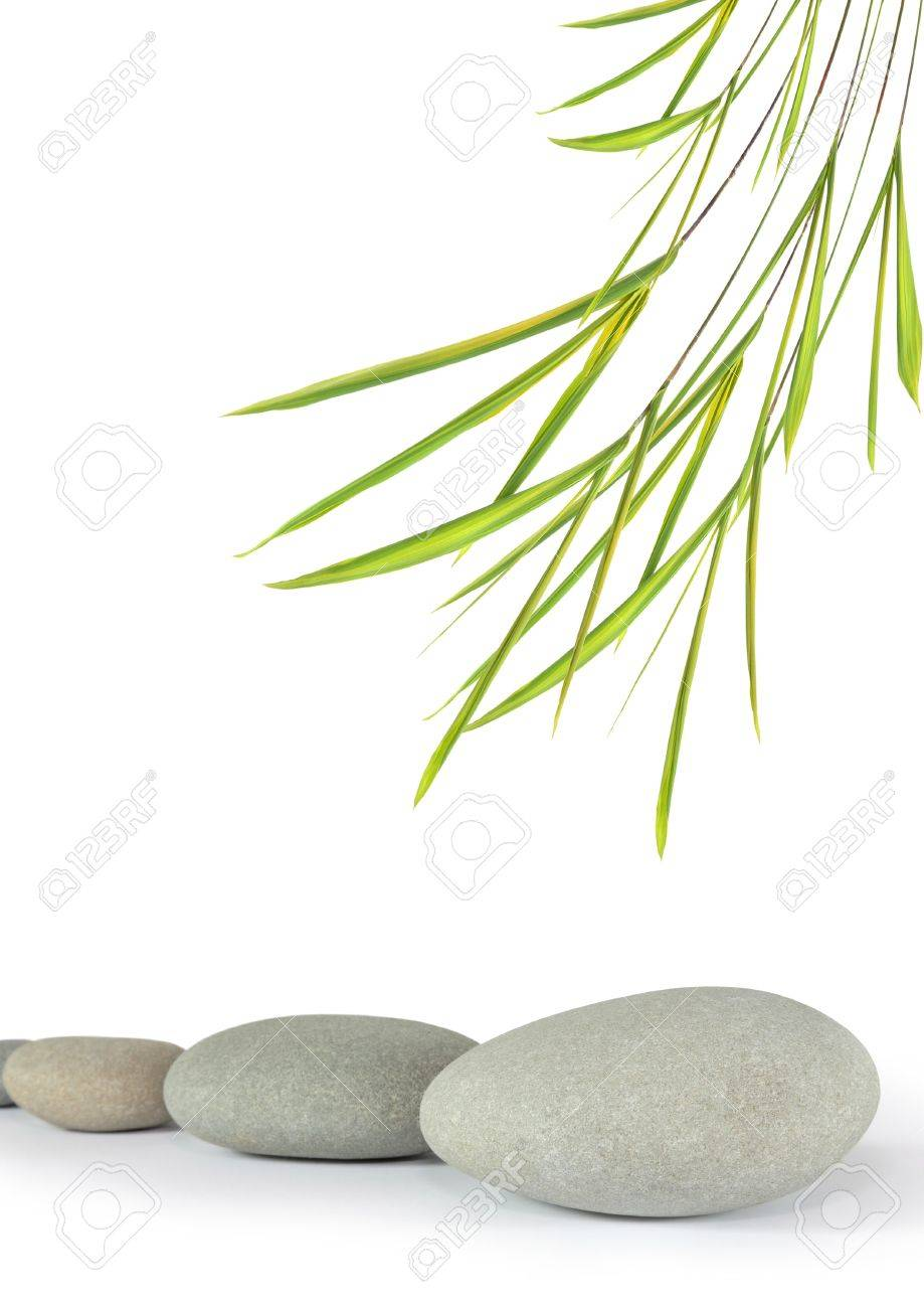 Zen abstract design of grey spa tones in a line with bamboo leaf grass, over white background. Focus on the front stone. - 4286797