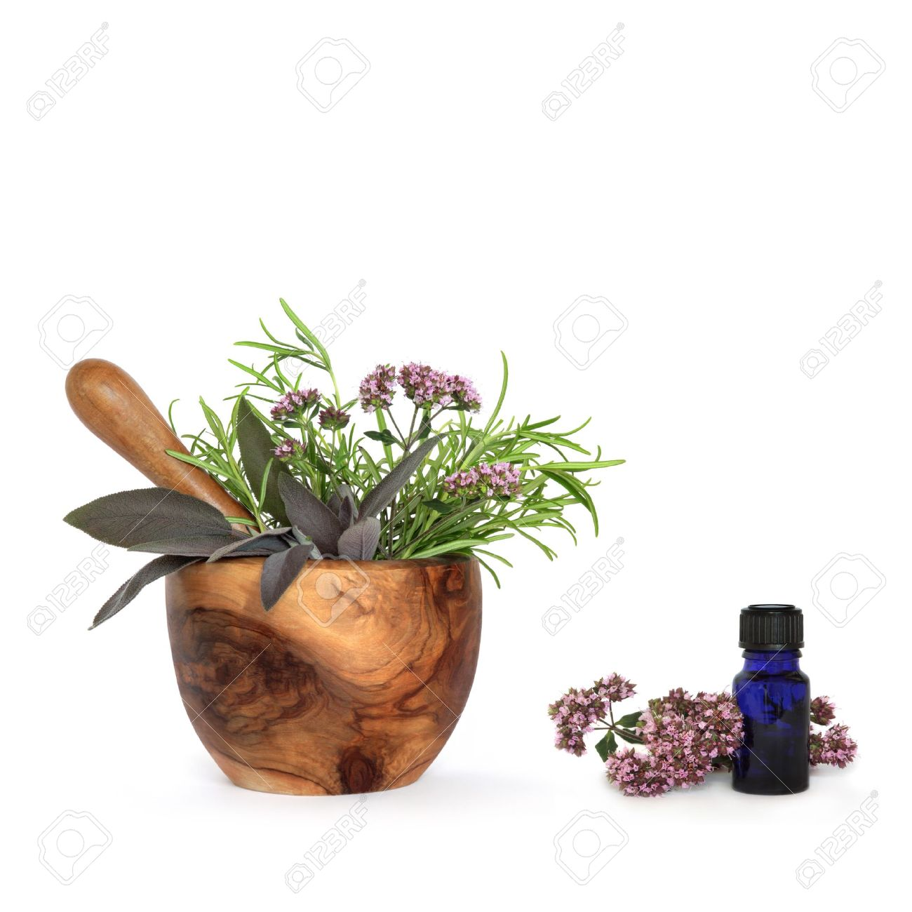 Rosemary, sage and marjoram herb leaf sprigs and flowers with an olive wood mortar with pestle and aromatherapy blue glass essential oil bottle, over white background. Stock Photo - 4408091