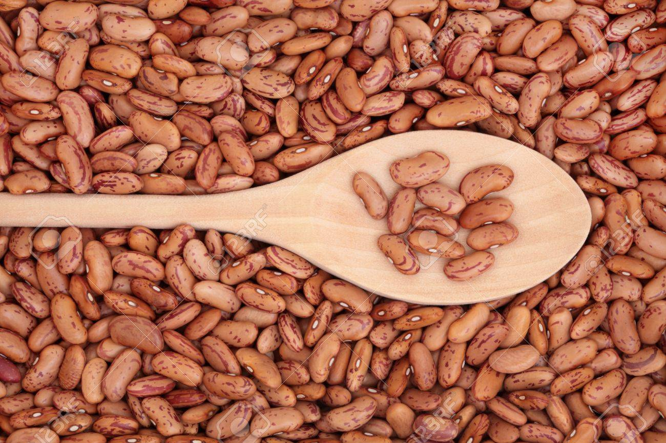 Pinto bean pulses in a wooden spoon and forming a background. Stock Photo - 8176841