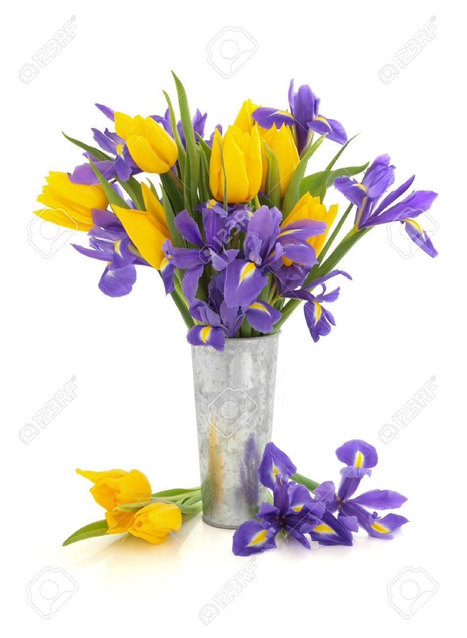 Purple iris and yellow tulip flower arrangement in an aluminum purple iris and yellow tulip flower arrangement in an aluminum vase and loose isolated over white mightylinksfo