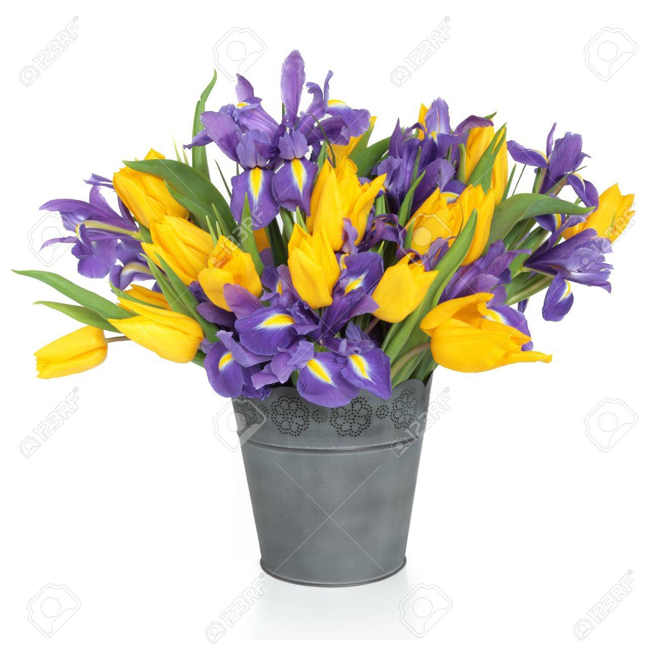 Purple iris and yellow tulip flower arrangement in a distressed purple iris and yellow tulip flower arrangement in a distressed metal vase and loose isolated over mightylinksfo
