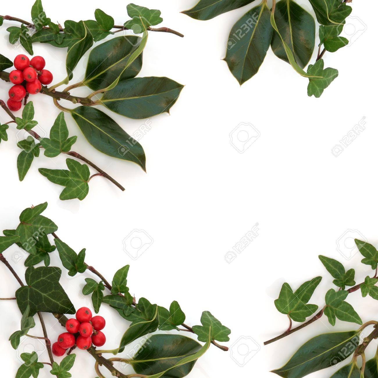Efeu Blatt Und Holly Blatt Zweige Mit Roten Beeren Schaffen Eine