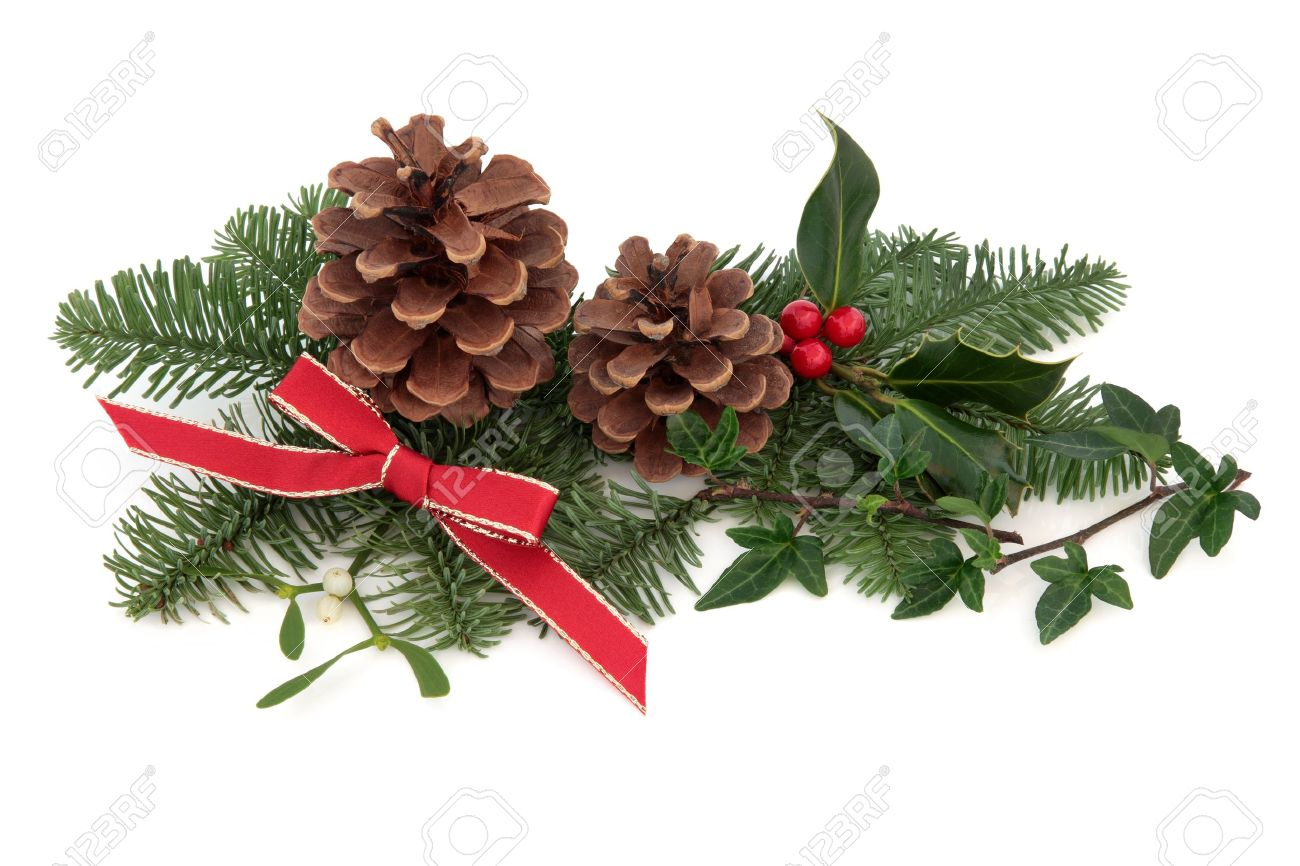 christmas decoration of holly ivy mistletoe pine cones and spruce fir leaf sprig