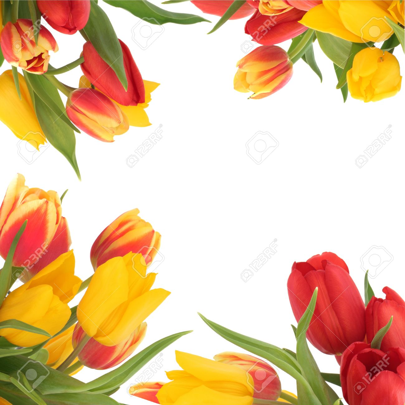 Yellow And Red Flower Logo Gallery Fresh Lotus Flowers