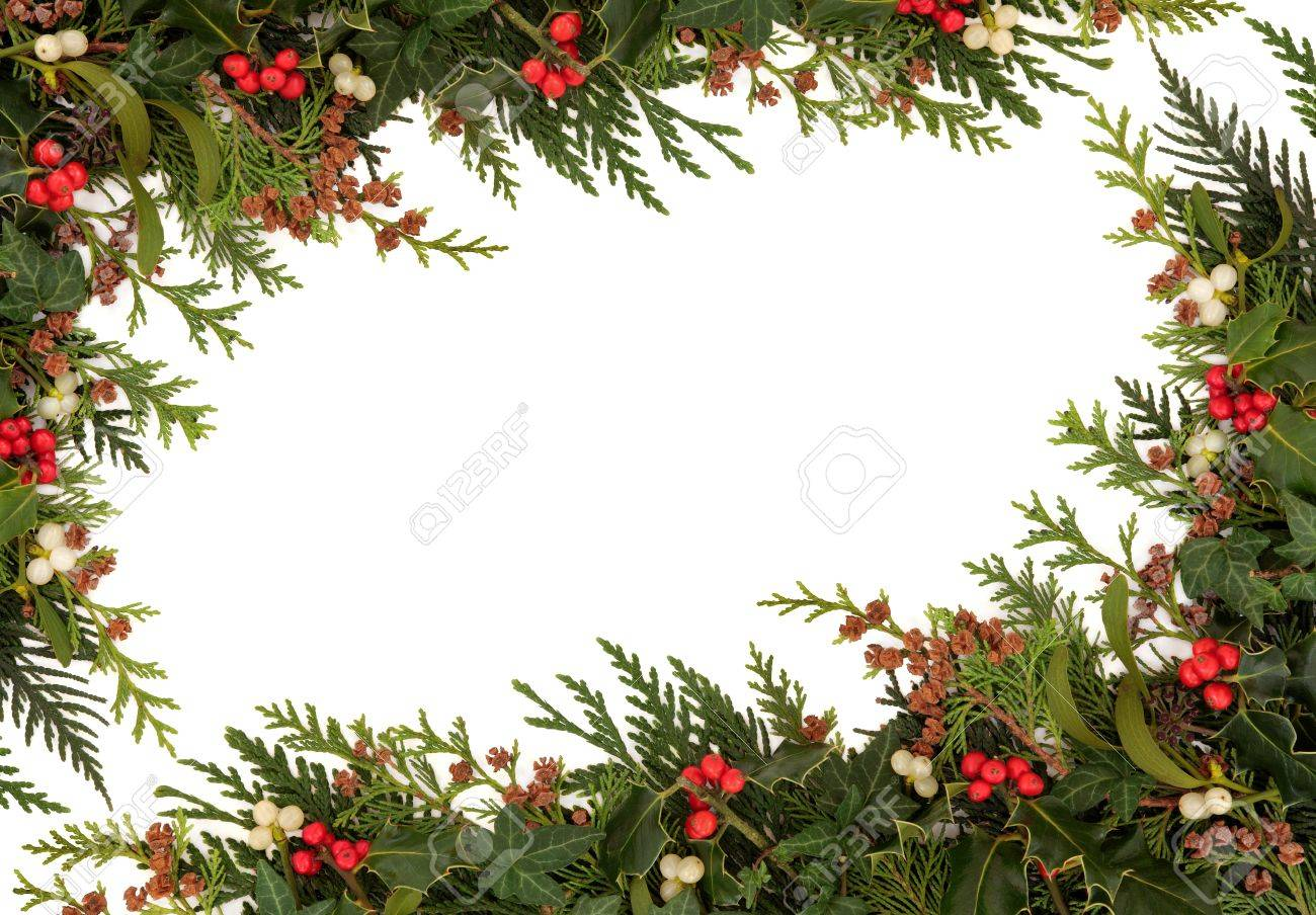 Christmas traditional border of holly, ivy, mistletoe and cedar cypress leaf sprigs with pine cones over white background Stock Photo - 15476592