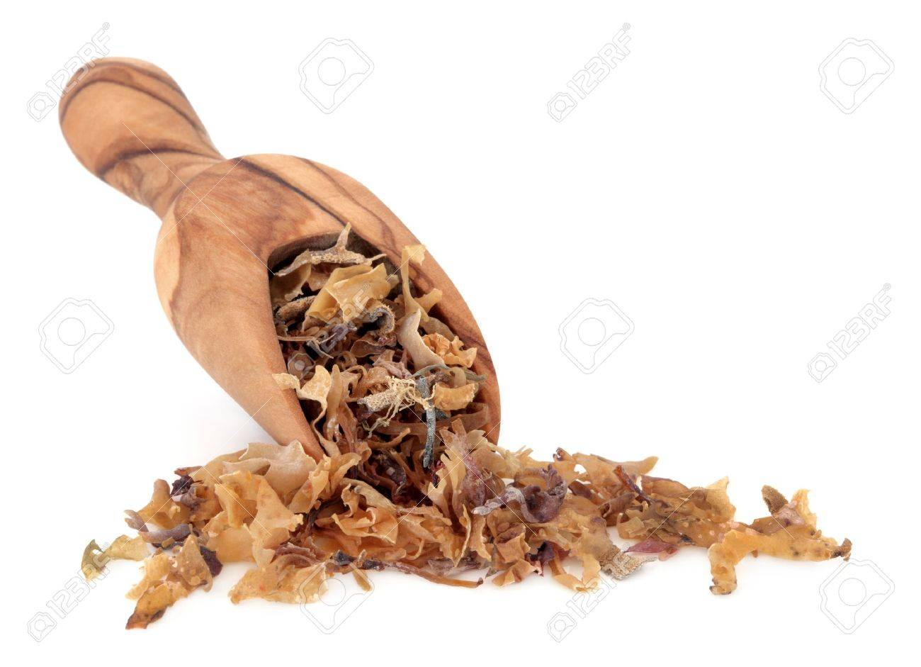 Irish moss superfood in an olive wood scoop over white background  Used as an alternative medicine and also as a good luck charm Stock Photo - 16244187