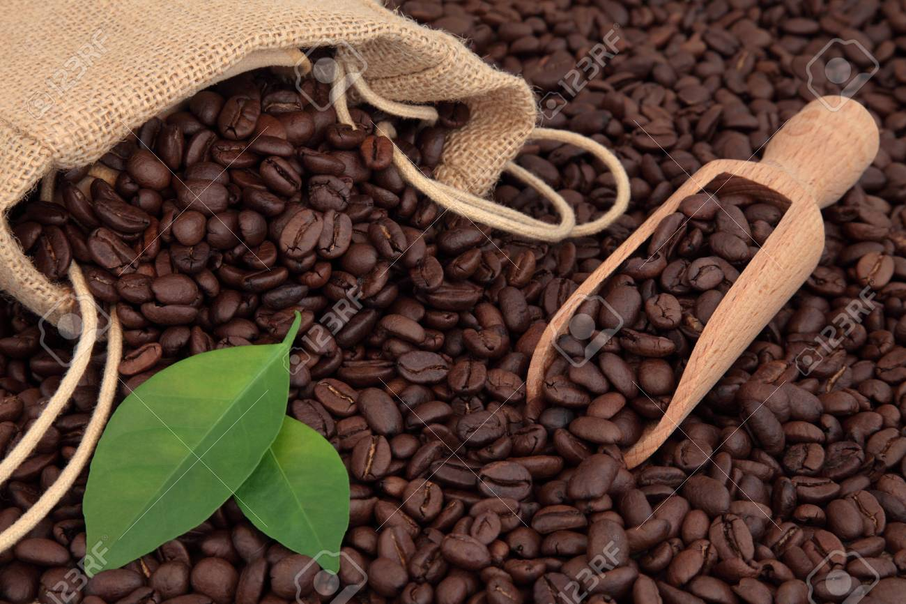 Coffee beans  in hessian sack and scoop with leaf sprigs forming a background Stock Photo - 17420741