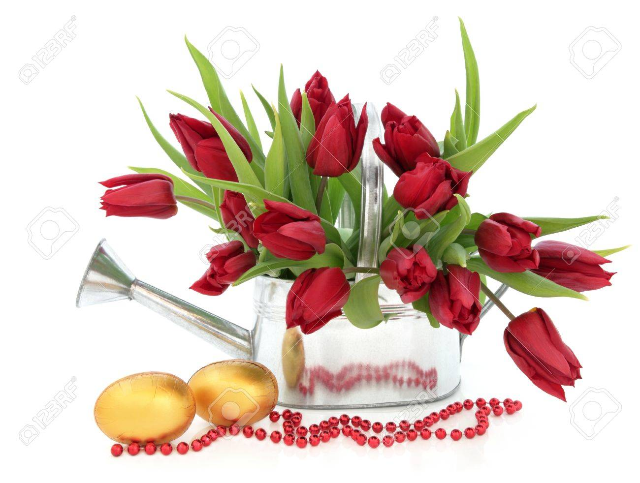 Tulip flower arrangement in a metal watering can with golden easter egg group and red bead chain over white background Stock Photo - 17420720