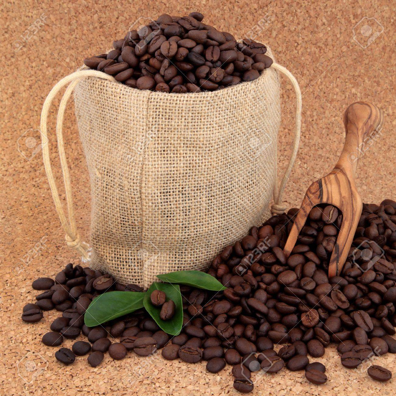 Coffee beans in a burlap sack with olive wood scoop and leaf sprigs over cork background Stock Photo - 18020124
