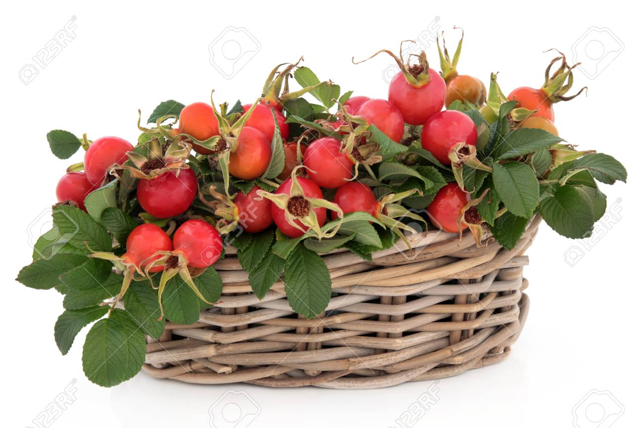 Rose hip fruit in  a wicker basket over white background Stock Photo - 19317711