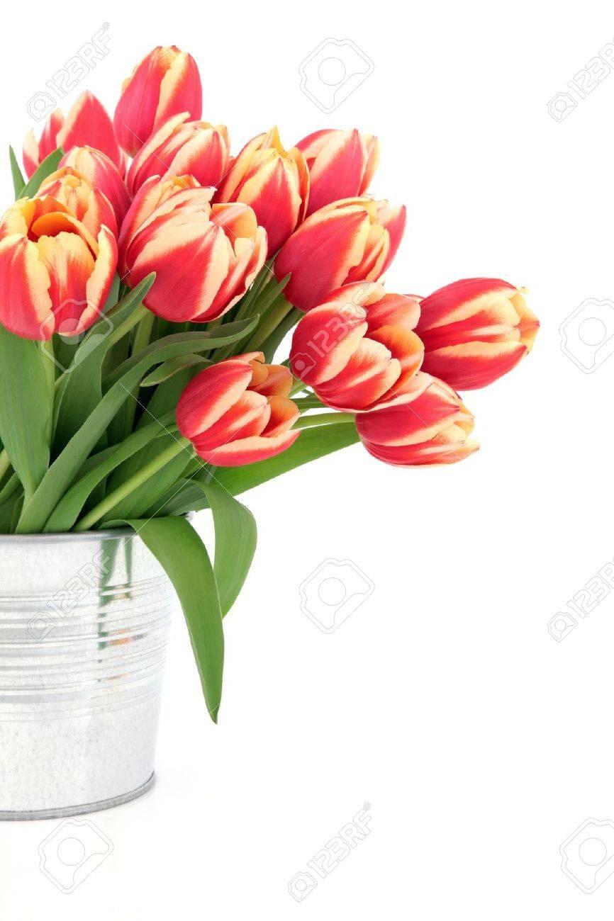 Arreglo Floral De Tulipanes Rojos Y Amarillos En Un Jarrón De Metal Sobre Fondo Blanco