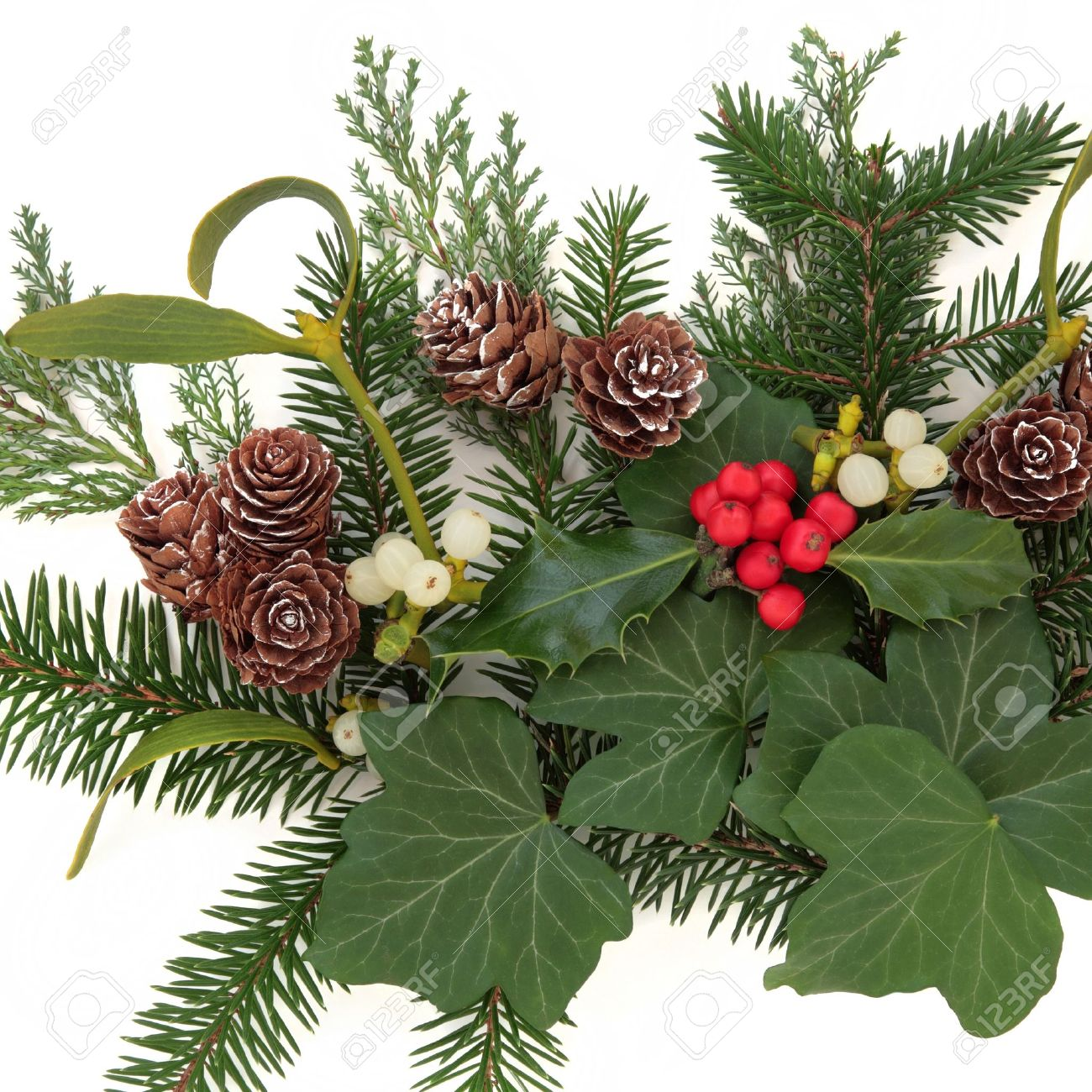 Christmas floral arrangement with holly, ivy, mistletoe, pinecones and winter greenery over white background Stock Photo - 21539857