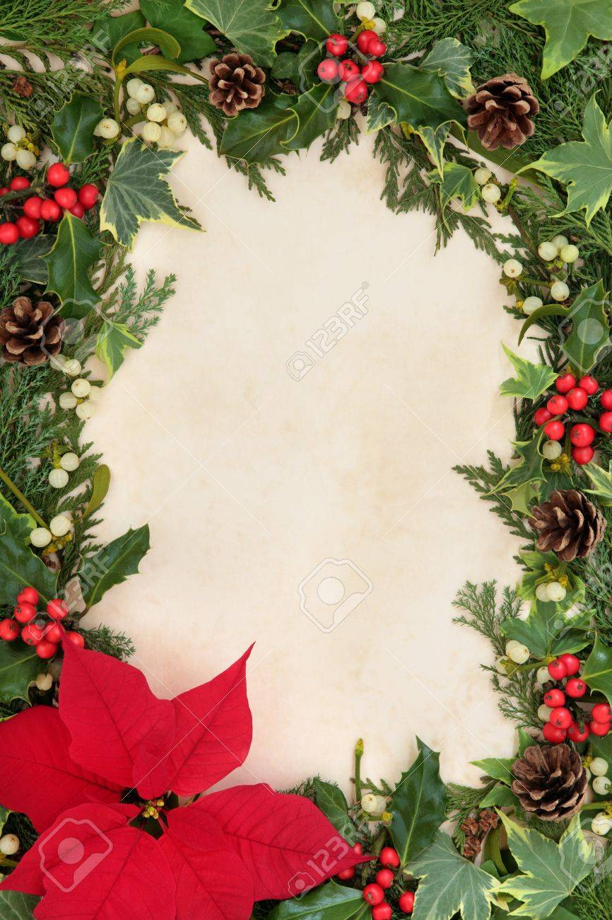 Poinsettia flower thanksgiving border with holly, ivy and mistletoe over old parchment background Stock Photo - 21845967