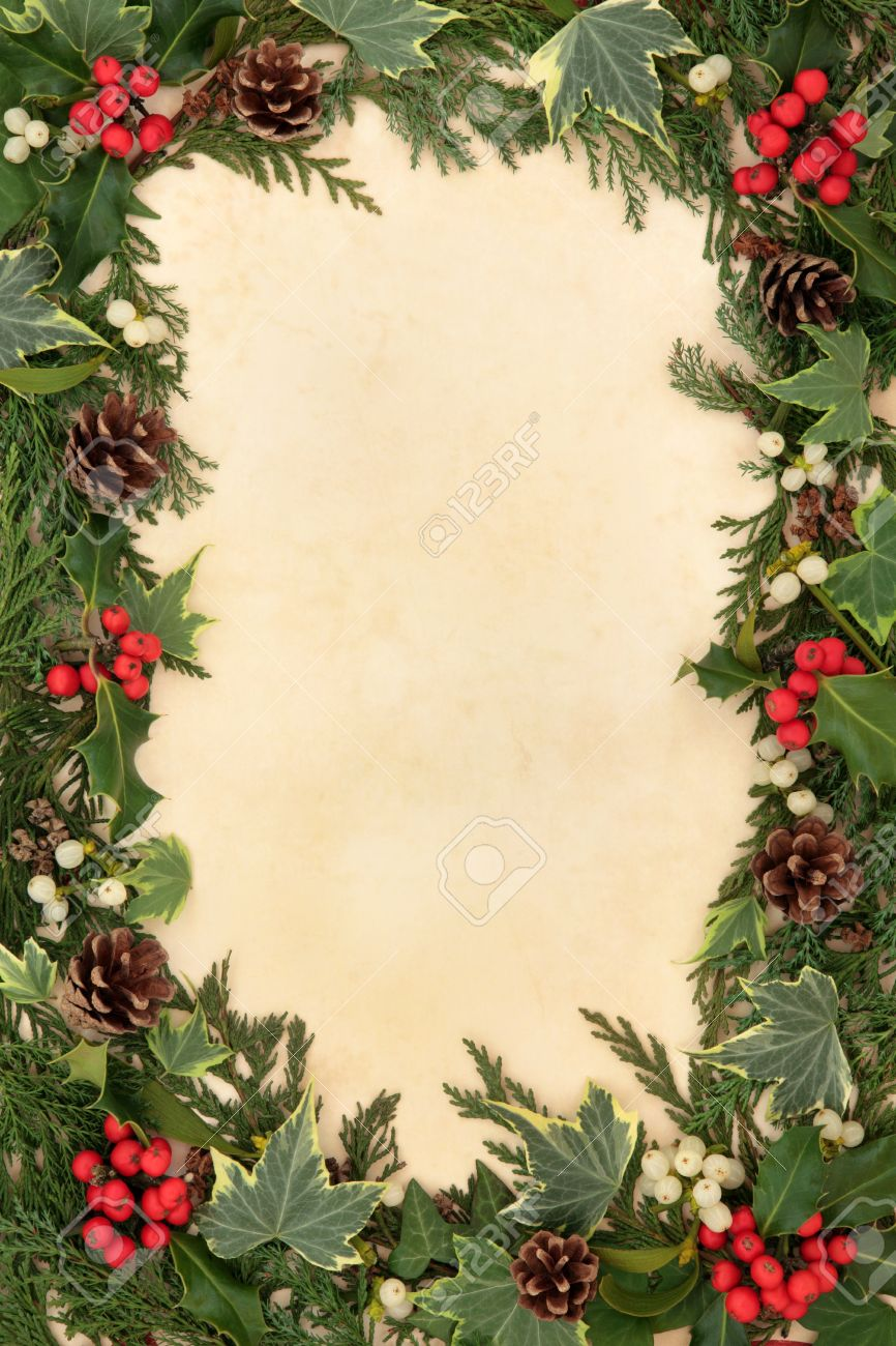 Why is holly a traditional christmas decoration - Stock Photo Traditional Christmas Floral Border Of Holly Ivy Mistletoe And Pine Cones Over Old Parchment Background