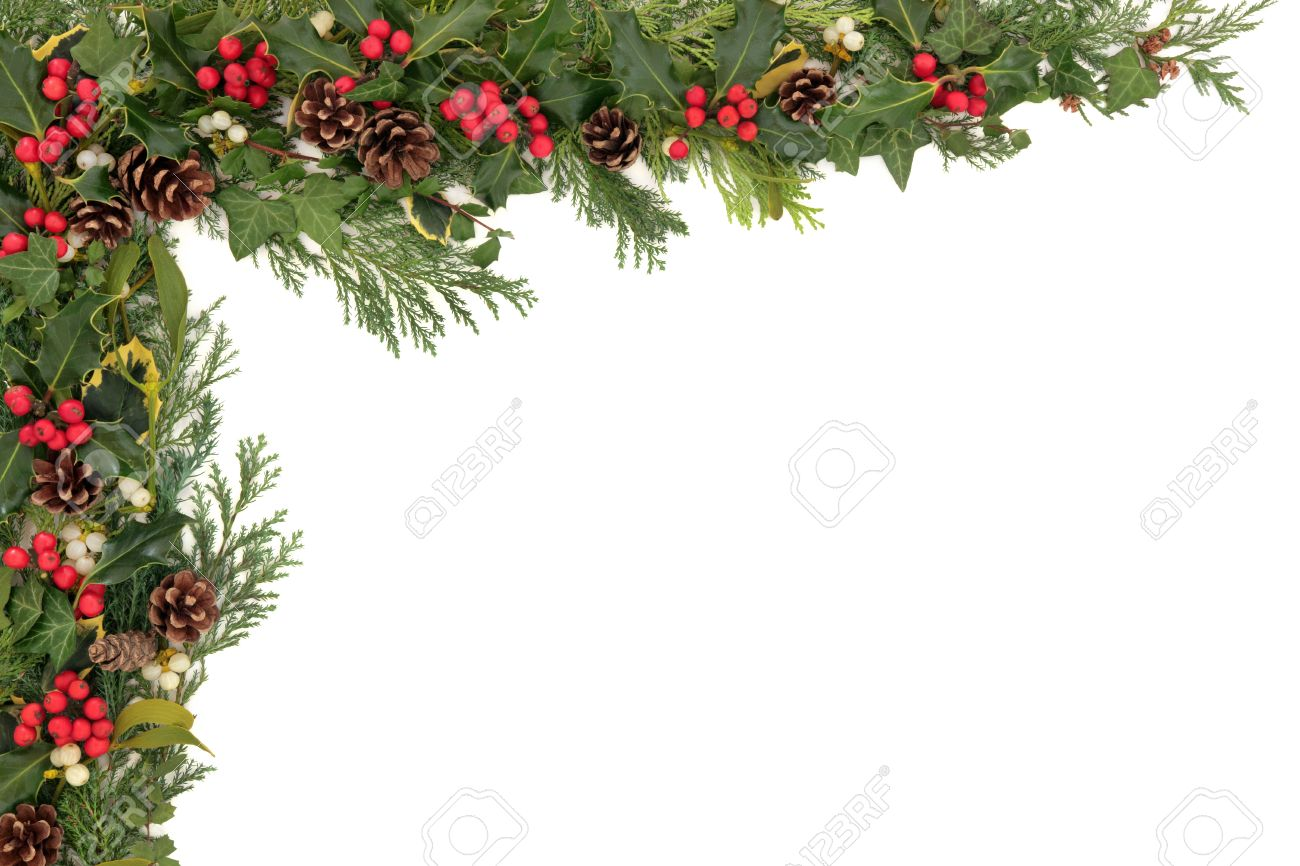 Christmas Background Floral Border With Natural Holly, Mistletoe ...