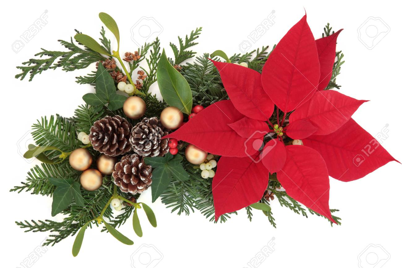 Poinsettia Flower Arrangement With Gold Bauble Decorations And Stock Photo Picture And Royalty Free Image Image 30645477